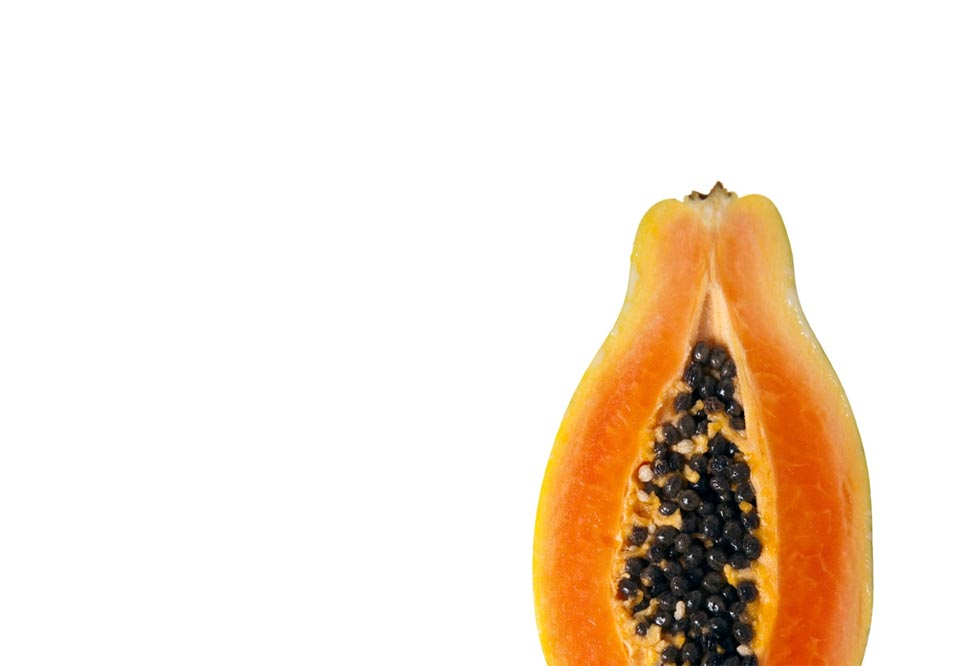 Fantasy Papaya Fruit