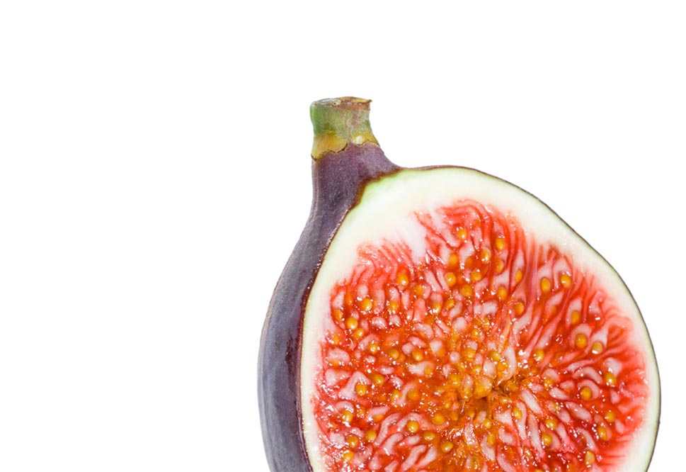 Fantasy Fig Fruit